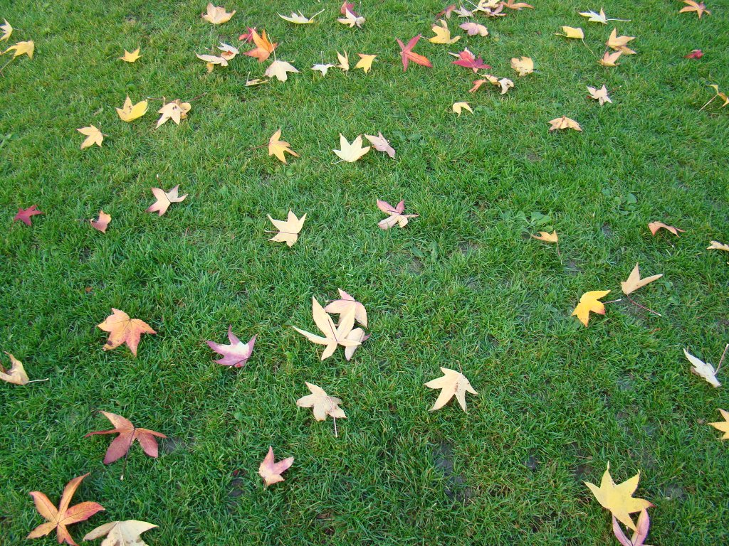 Outono em Genebra