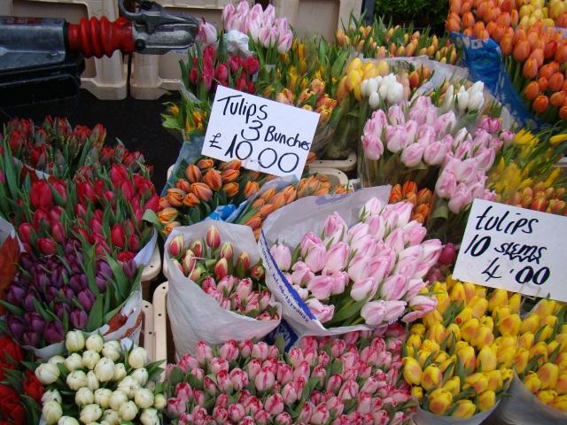 Flores  em Notting Hill - Londres