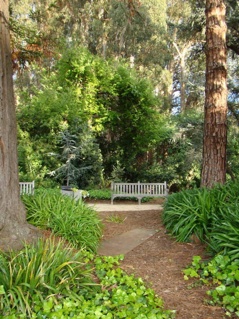Universidade de Berkeley, California