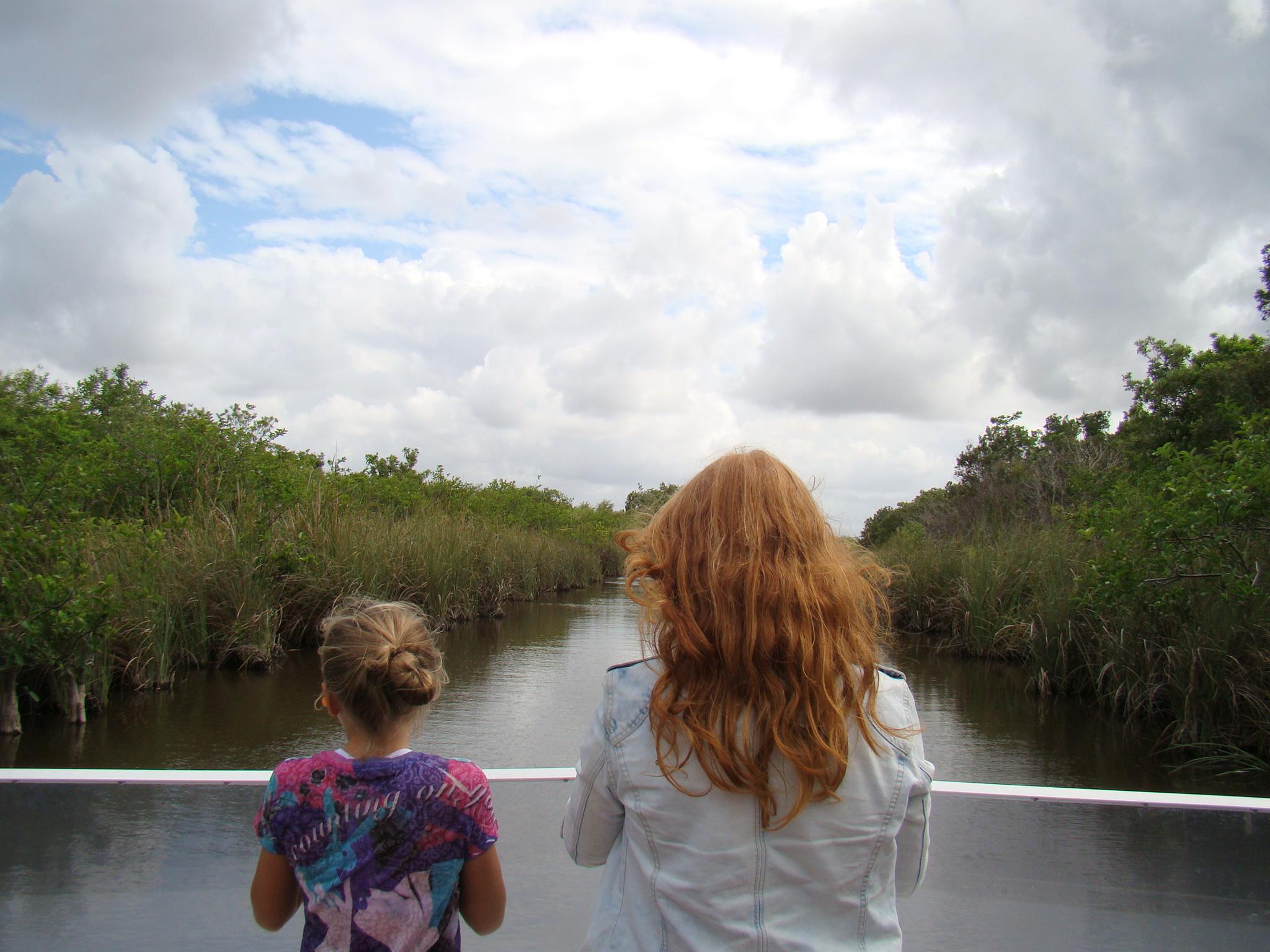 Safari pelo Everglades