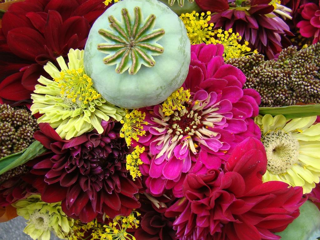 Flores - Farmer's Market - Castro