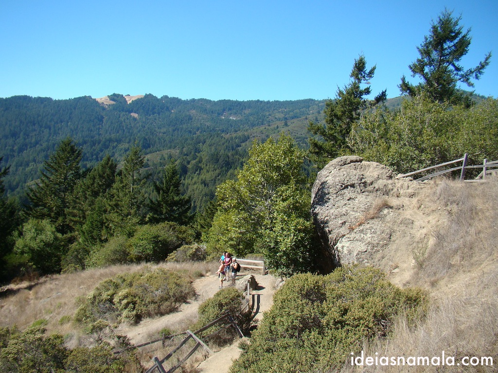 Ocean View Trail - Lookout